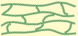 Polymer4